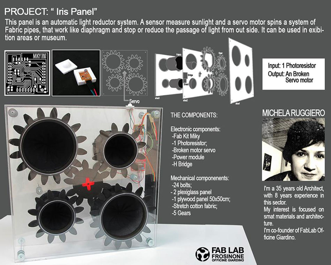 iris-panel-project-06